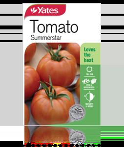tomato-summerstar-2 (1)