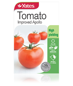 tomato-improved-apollo-2 (1)