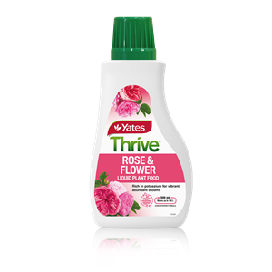 Yates Thrive Roses & Flowers Liquid Plant Food